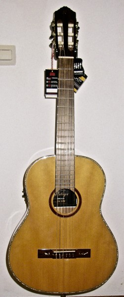 Ortega Konzertgitarre RE11LTD mit TA und Tuner