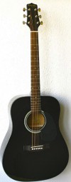 Billy Ray TD-105BK, Dreadnought schwarz
